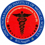 Adichunchanagiri Institute Of Medical Science